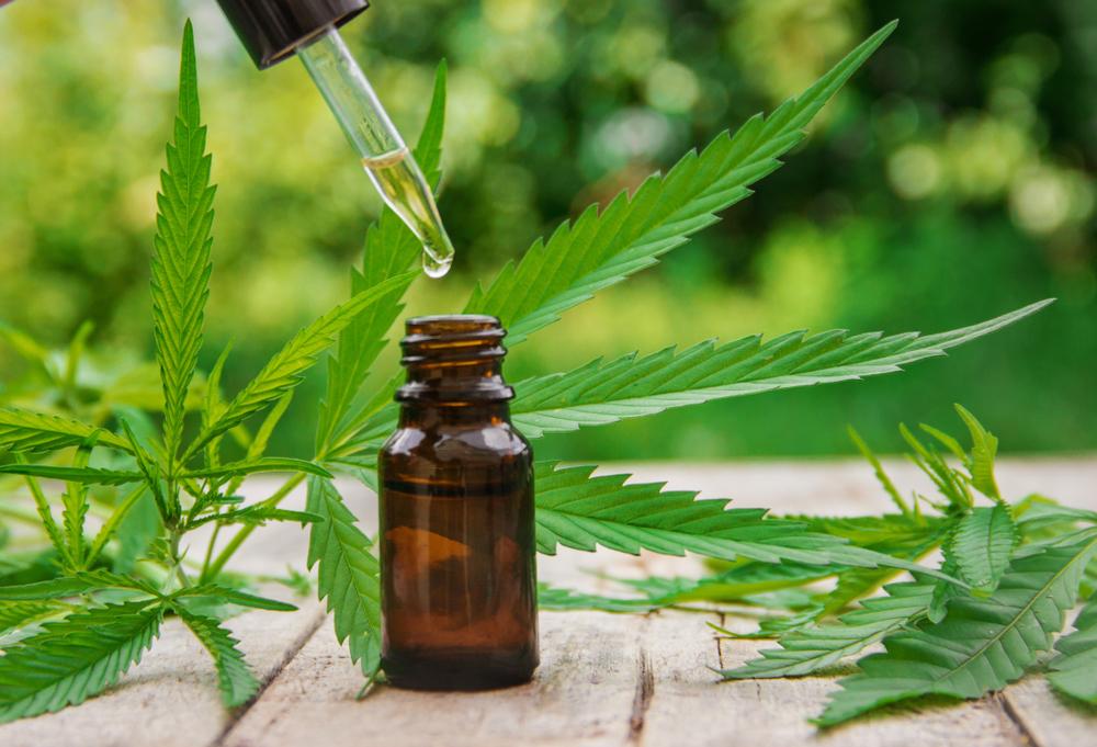 cannabis oil tincture